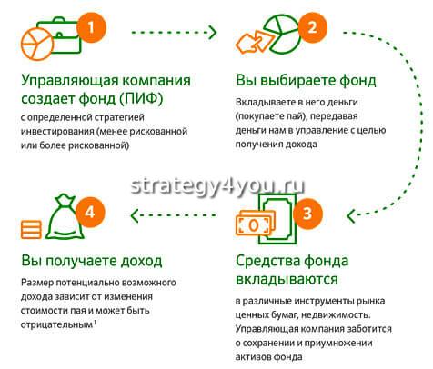 принцип работы паевого инвестиционного фонда