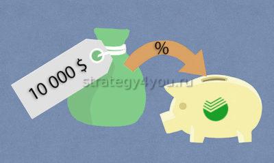 как выгодно вложить доллары