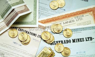 разные виды долговых ценных бумаг