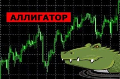 торговая система аллигатор