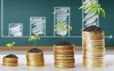 инвестиционный вклад как сделать