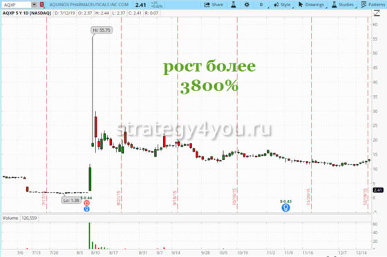 Дешевые акции (pennystocks) в схеме Pump and Dump