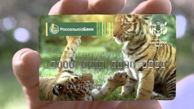 карта амурский тигр