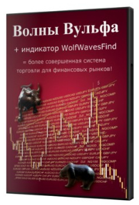 Авторский видеокурс Алексея Лободы 'ВОЛНЫ ВУЛЬФА'