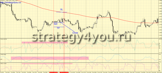 Trading Forex Strategy
