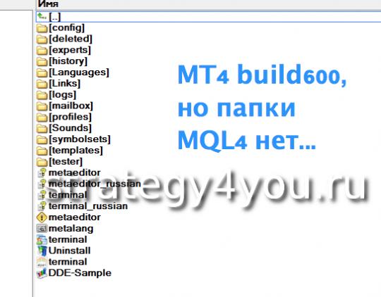 build600, а папки MQL4 нет
