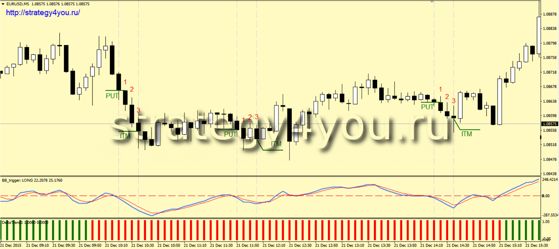 binary options 15 minutes strategy horse