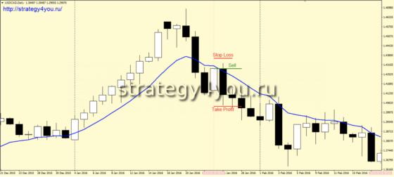 Стратегия торговли USD/CAD, стабильно дающая 900 пунктов в год